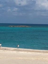 Bimini Beach